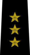 Belarus Police—01 Colonel General rank insignia (Black).png