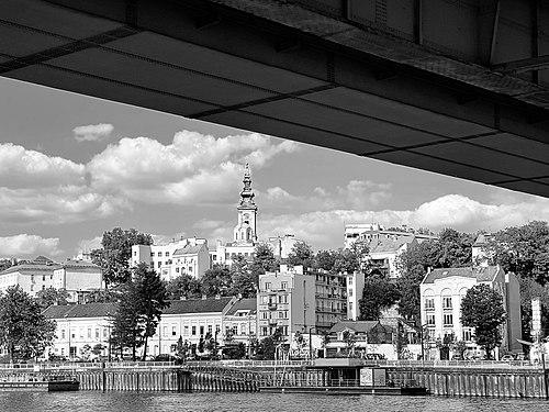 Belgrade Under The Bridge.jpg