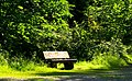 Bench In The Green - panoramio.jpg