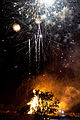 Bestival 2010 bonfire and fireworks 3.jpg