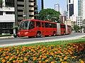 Biarticulado em Curitiba.jpg