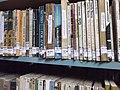 Biblioteca Rio-Grandense, Rio Grande, Brazil0001.JPG