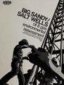 Big Sandy-Salt Wells oil & gas environmental assessment (IA bigsandysaltwell00unit).pdf