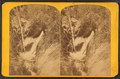 Birch Falls, by Hillers, John K., 1843-1925.png