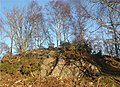 Birches on rock exposure, Bridgend. - geograph.org.uk - 307909.jpg