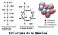 Blausen 0434 Glucose-es.png