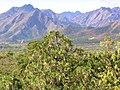 Blick von den Ming-Gräbern - panoramio.jpg