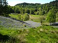 Bluebells in Loch Ard Forest - geograph.org.uk - 1347093.jpg