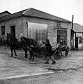 Bnei Brak. 1930s. Bitmuna (Ester 0330).jpg