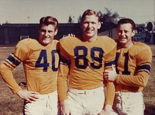 Bob Carey (American football) American football end in the National Football League