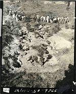 Bodo League massacre in North Chungcheong