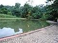 Bosque dos Buritis - panoramio (5).jpg