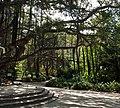 Botanical garden El'Hamma 5.jpg