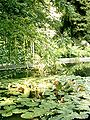 Botanical garden in Poznań18.JPG