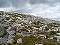 Boulders on Schiehallion's side - geograph.org.uk - 1439590.jpg