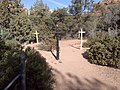 Boynton Canyon Trail, Sedona, Arizona - panoramio (36).jpg