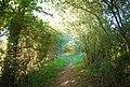 Bridleway to Haysden - geograph.org.uk - 2047127.jpg