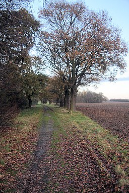 Bridleway to Trimley Marshes - geograph.org.uk - 1070161