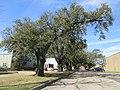 Brookhollow Esplanade Oaks, Jefferson Parish, Louisiana, January 2021 05.jpg