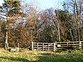 Brothybeck Wood, gate on west side - geograph.org.uk - 708294.jpg