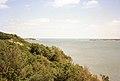 Brownsea Island, Poole (270209) (9453587961).jpg