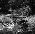 Brv čez potok Raduljo pod Blečjim Vrhom 1951.jpg