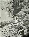 Bulletin (1905) (14777235284).jpg