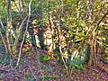 Bunker bei Merzig 17.jpg
