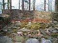 Burg kindhausen bergdietikon 3.jpg