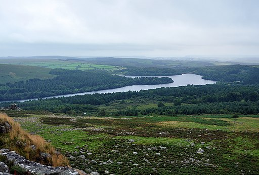 Burrator reservoir from Leather Tor