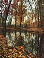 Burton, United States (Unsplash).jpg