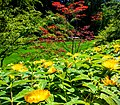 Butchart Gardens - Victoria, British Columbia, Canada (29101735965).jpg