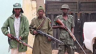 civilian joint task force wikipedia