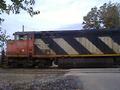 CN Loco -2419.png