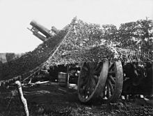 photo of camouflaged field gun