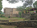 Campus University of Yaoundé I (2014) 'chamignons' 3.jpg