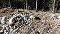Canadian Dump (Mar Lodge Estate) (22SEP12) (11).jpg