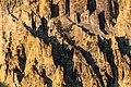 Canyon fins at sunset (37088481505).jpg