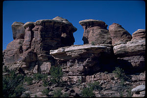 Canyonlands National Park CANY3811.jpg