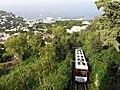 Capri-train.jpg