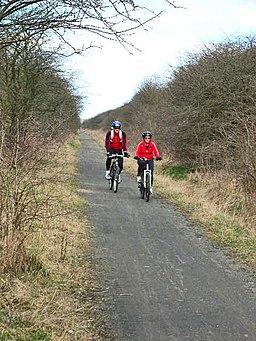 Castle Eden Walkway - geograph.org.uk - 150759