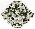 Cellular automata (720001610).jpg