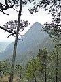 Cerro Xaltonalli.jpg