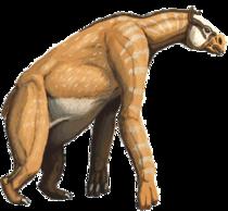 ChalicotheriumDB1.png