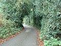 Chapmans Lane, St Paul's Cray - geograph.org.uk - 1580624.jpg