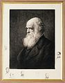 Charles Robert Darwin. Etching by Paul Rajon. Wellcome V0017827.jpg