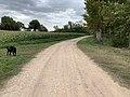 Chemin Fasses St Cyr Menthon 9.jpg