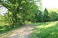 Chemin de Champfailly à Chevreuse le 21 mai 2015 - 08.jpg