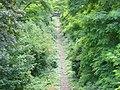 Chemin de fer de Petite Ceinture - nature 2.jpg