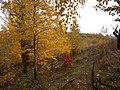 Cherkas'kyi district, Cherkas'ka oblast, Ukraine - panoramio (359).jpg